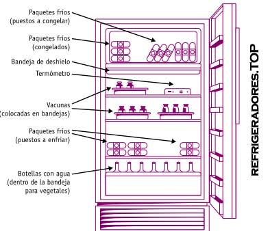 como se acomodan las vacunas en el refrigerador